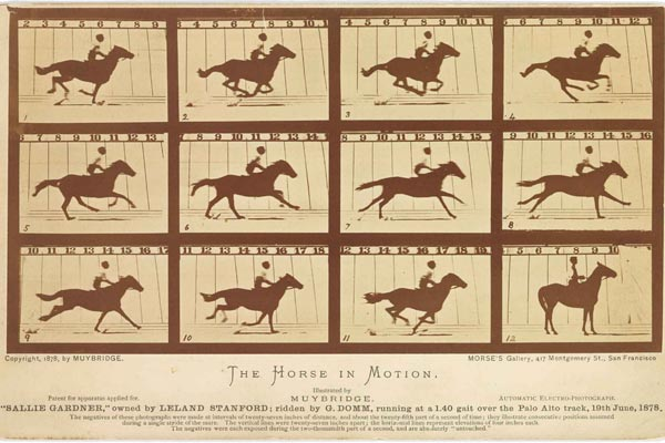 eadweard muybridge the horse in motion 1878