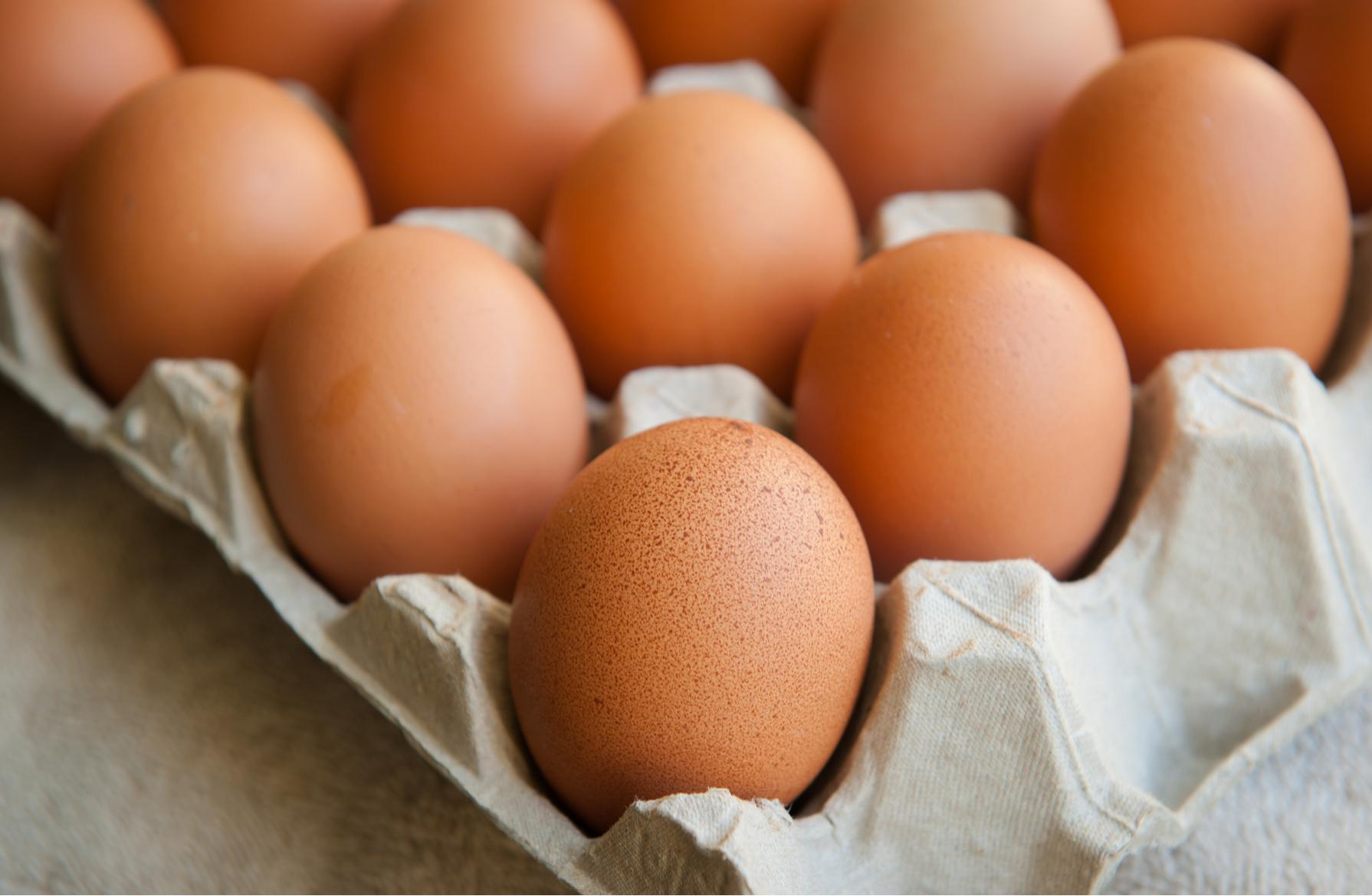 how much protein in an egg